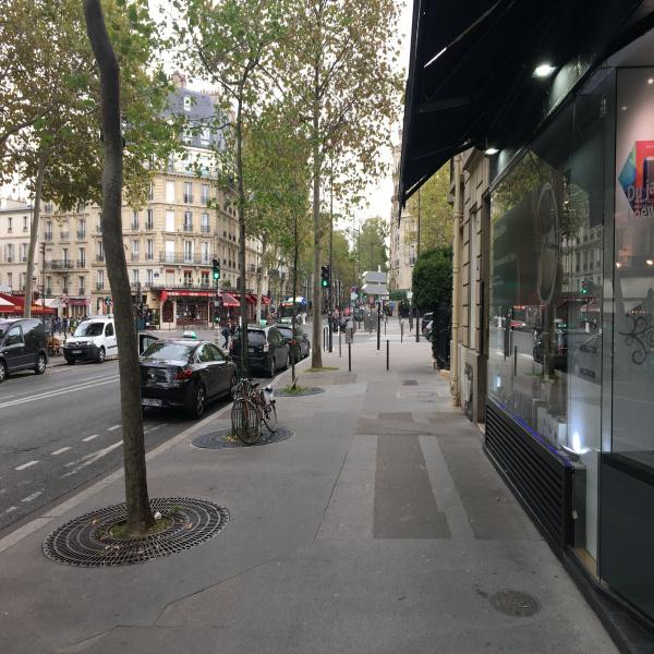 Location Immobilier Professionnel Cession de droit au bail Paris 75007